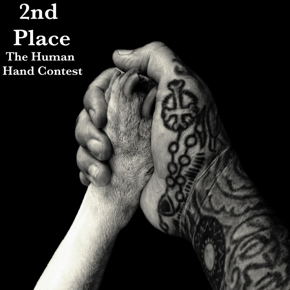My photo was chosen for second place in The Human Hand contest on Terabella Media. Click here to go to their website and see the other winners.