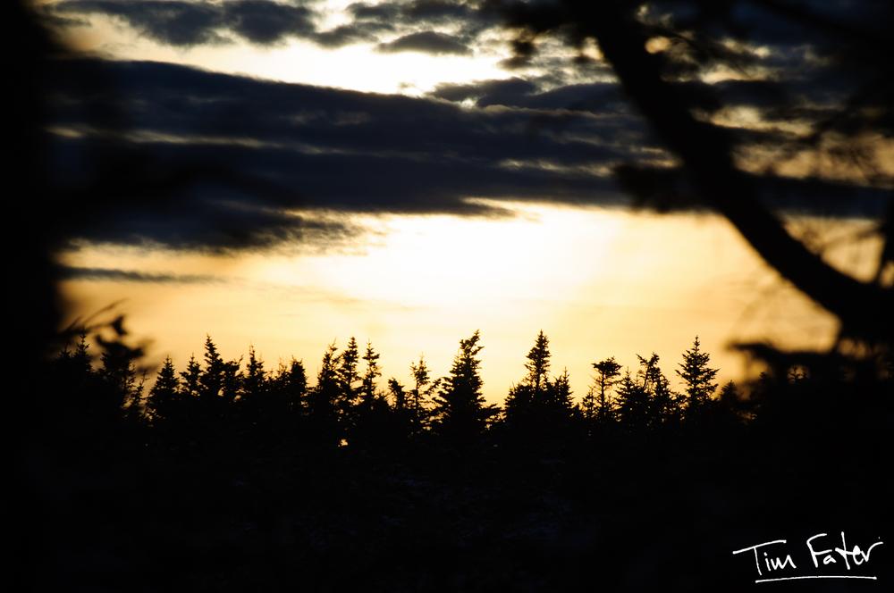 TimFater.com-6966.jpg