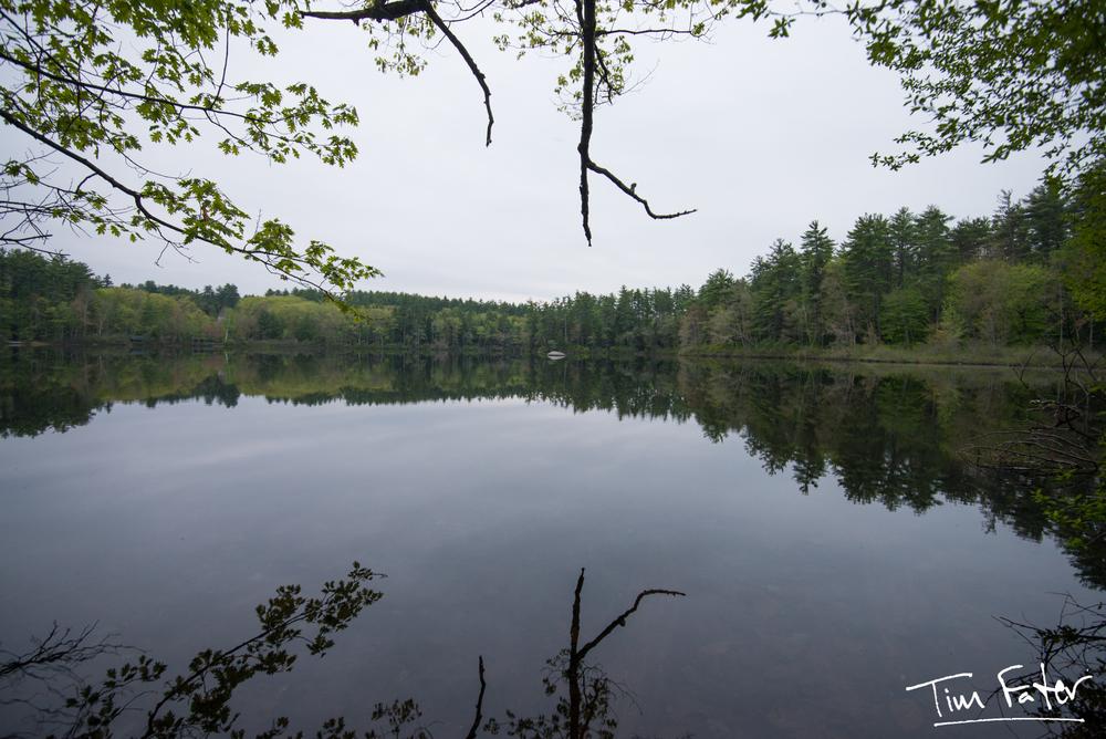 TimFater.com-3092.jpg