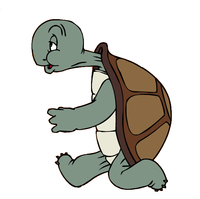 Hermit - Cecil Turtle - Goes at his own pace