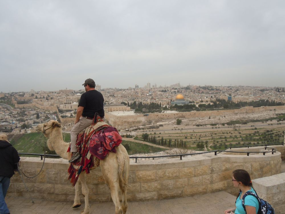 A picture of modern day Mount Moriah taken on my trip to Israel. Mount Moriah is now known as the Temple Mount in Jerusalem. That's a friend of mine on the camel.