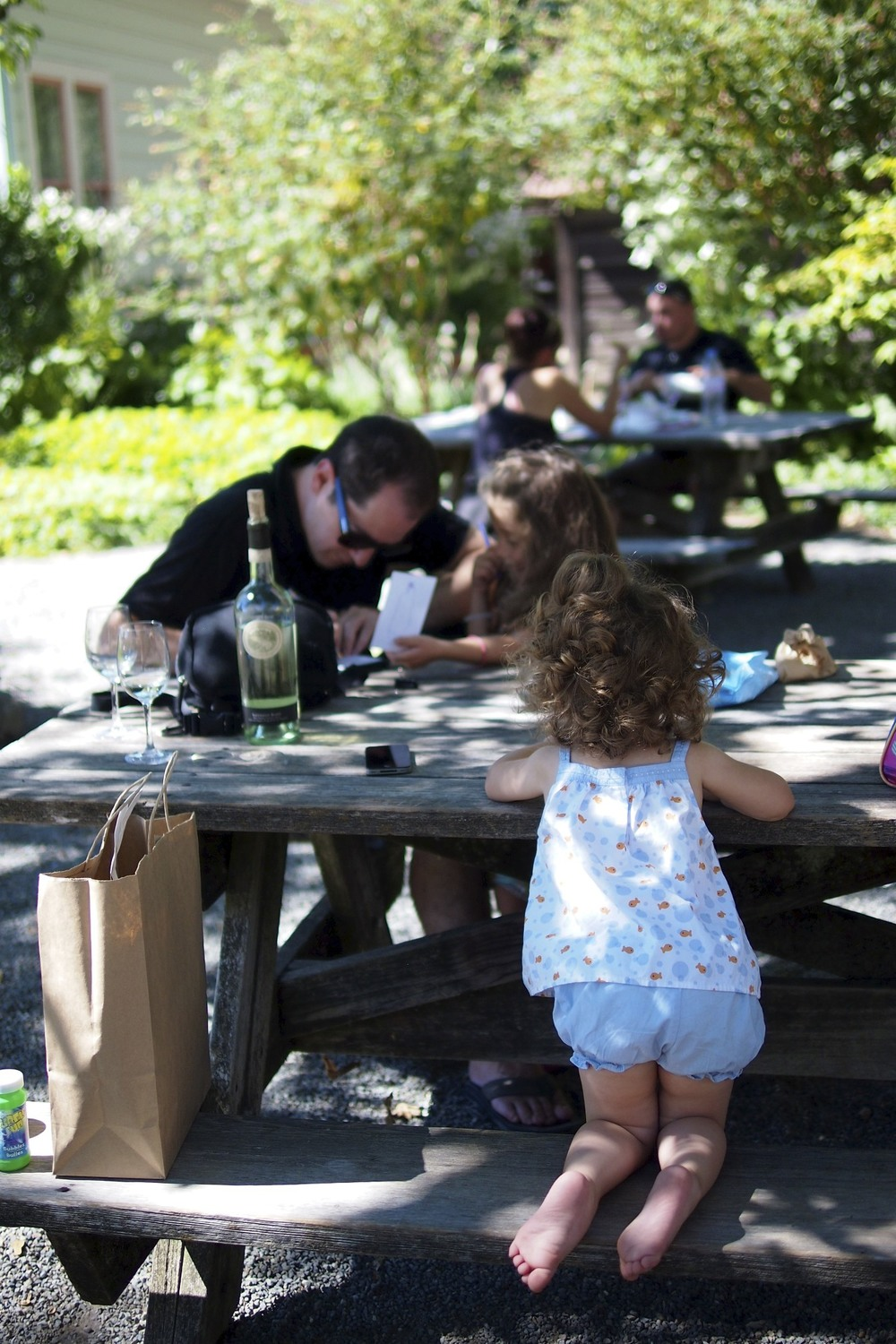 Healdsburg and wine tasting with kids