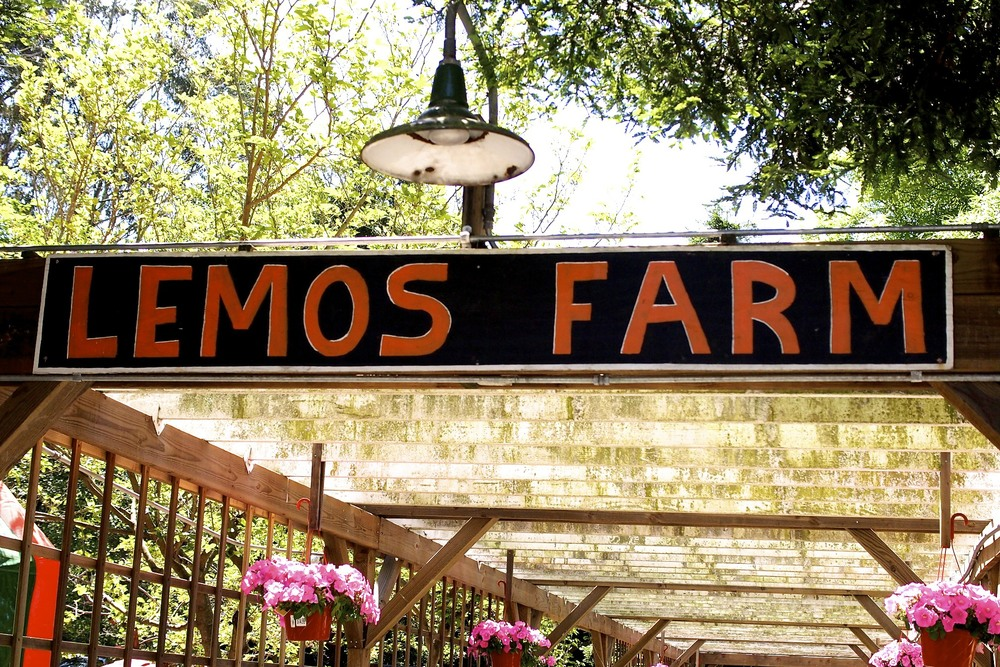 Lemos Farm in Half Moon Bay, CA.