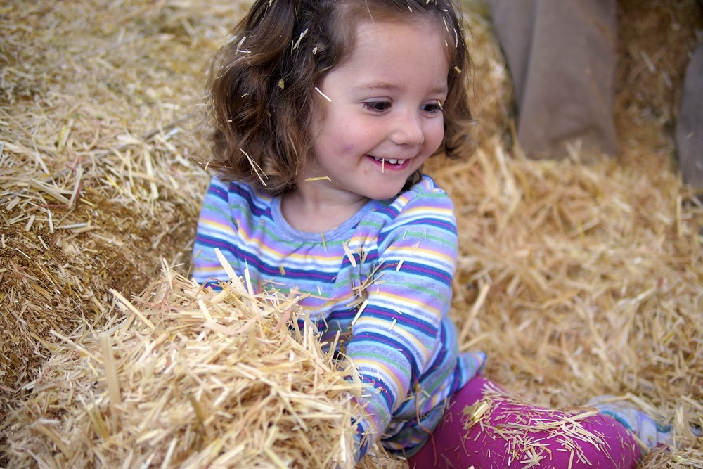 Maren having a good play in the hay as we toured the grounds.