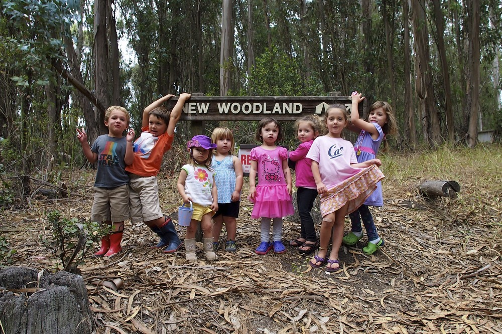 New Woodland, Tilden Park- Group Camping with families.