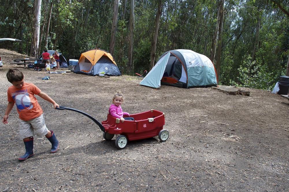 Wagon fun.