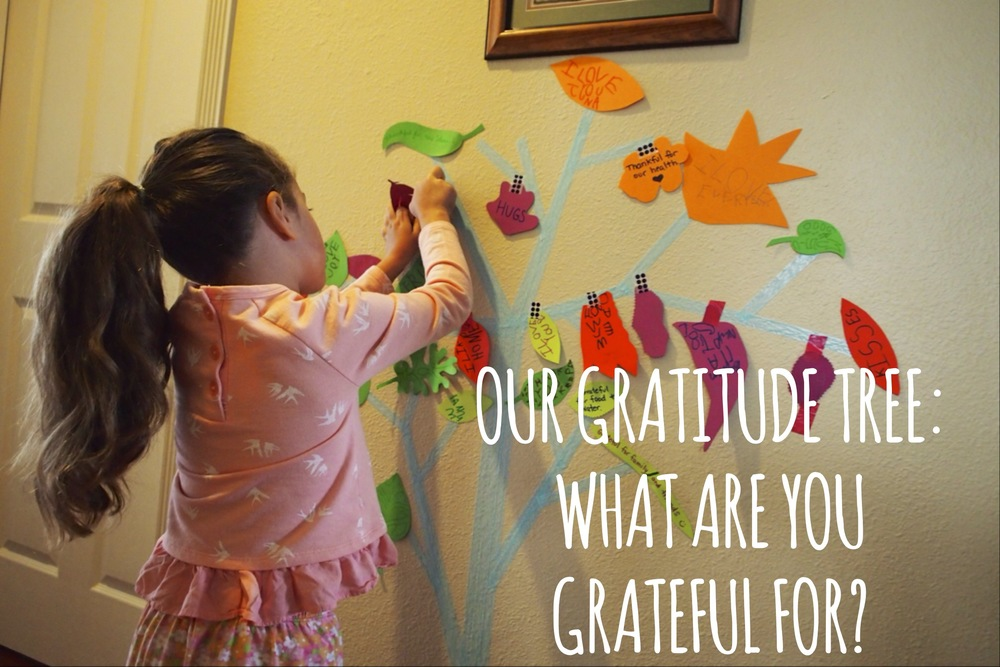 Our Gratitude Tree:  What are you thankful for?