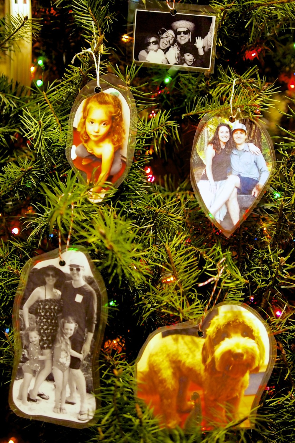 Make fun, cute and easy photo ornaments or gift tags.