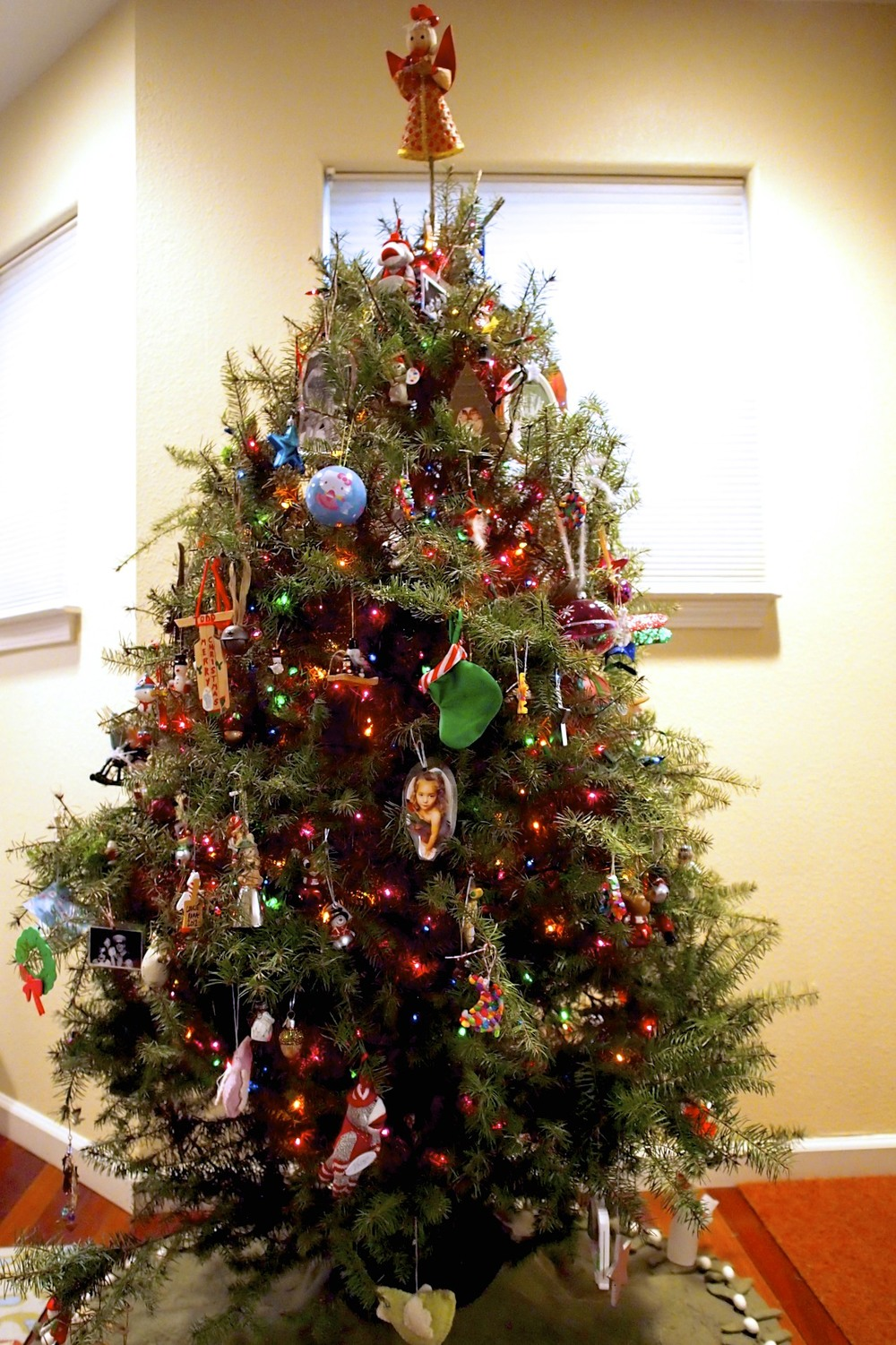 Check out our fancy tree!  Who wouldn't want to drag a perfectly good tree from the wilderness into their house to hold up their trinkets of years past?