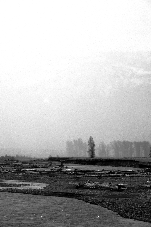 Silent Storm 1