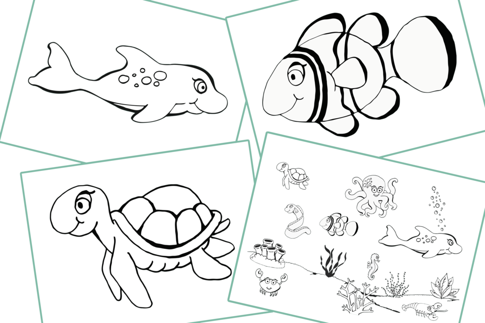 FREE Colouring - Sea Animals Early Years (EYFS) Printable Resource ...