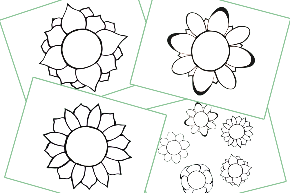 Flowers/Summer Theme/Topic Colouring Pages/Activity