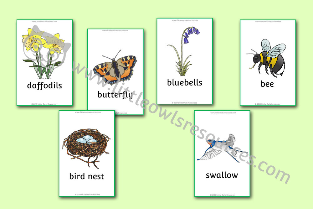 Spring Picture Snap Cards