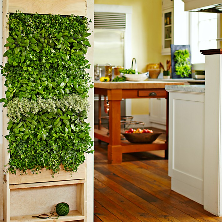 Living herb garden, via Williams Sonoma