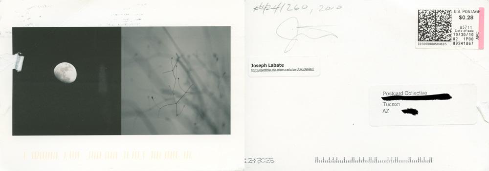 Joseph Labate