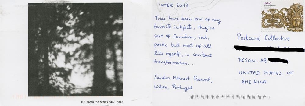 Sandra Mehnert Pascoal