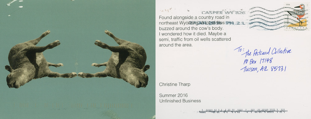 Christine Tharp