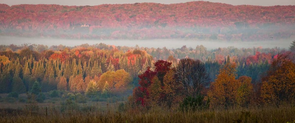 Torch Lake Michigan blanketed by a layer of fog while the leaves above the lake burn in anticipation of Winter.