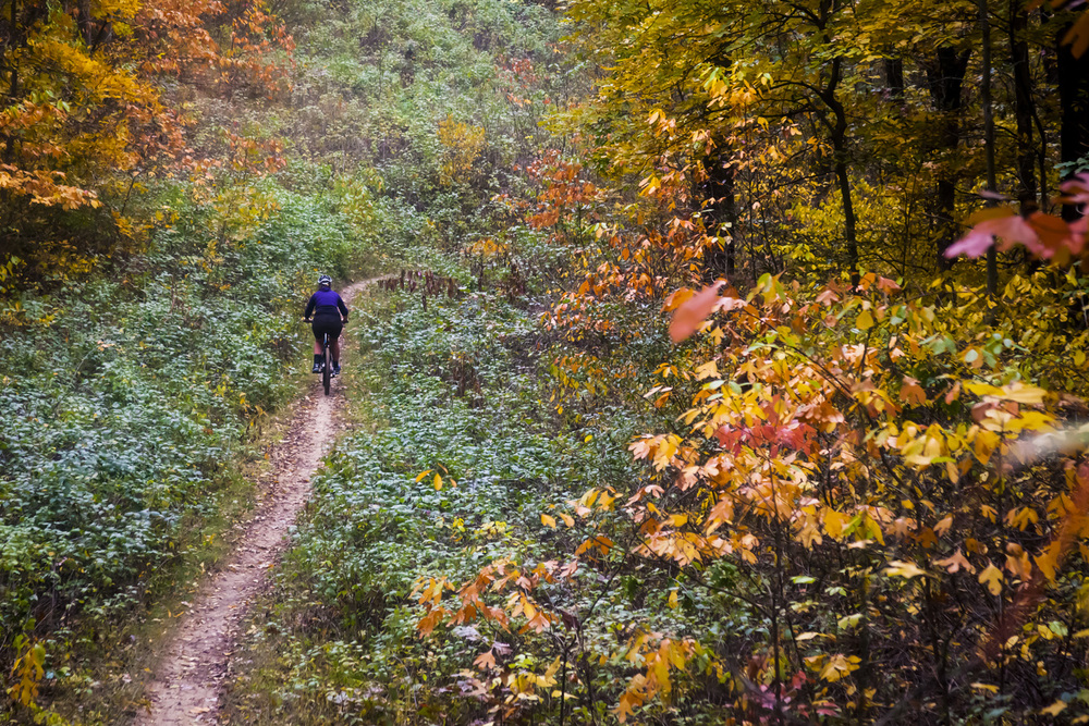 Yankee Spring Mountain Bike Trails - Near Middleville Michican
