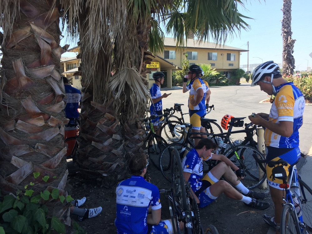 A shady rest stop for the cyclists