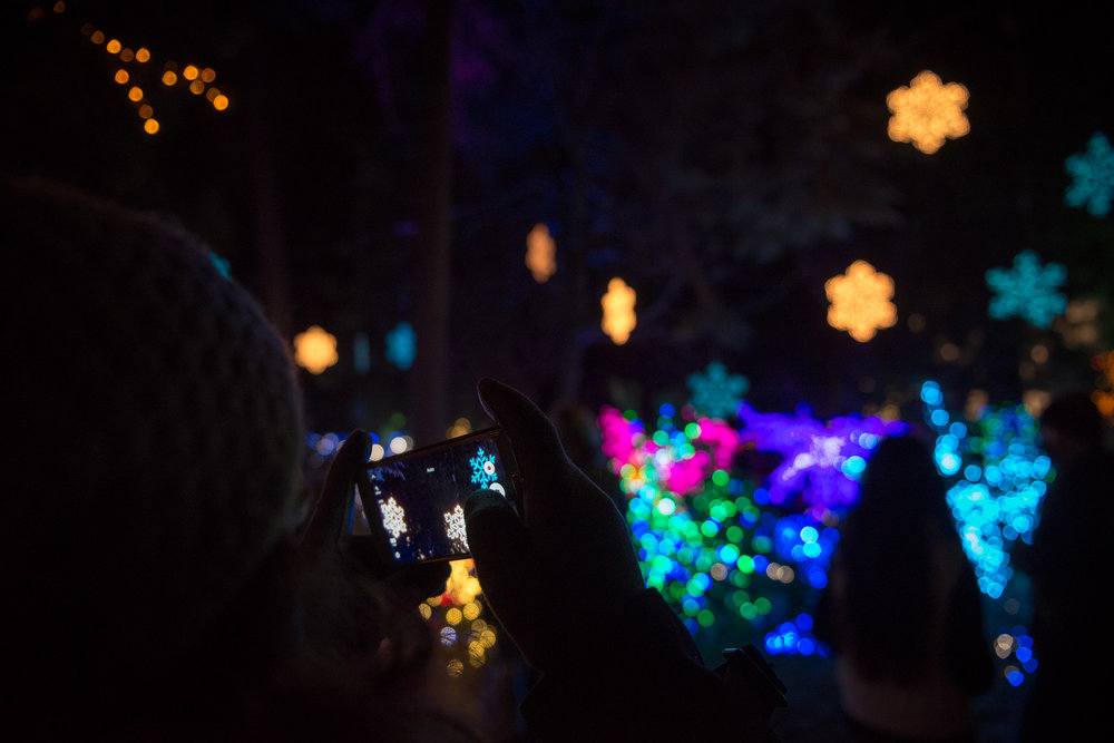 The Grotto's Festival of Lights on Christmas Eve.