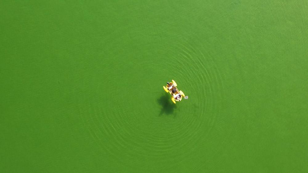 Frog-Boat-aerial-above-boat.jpg