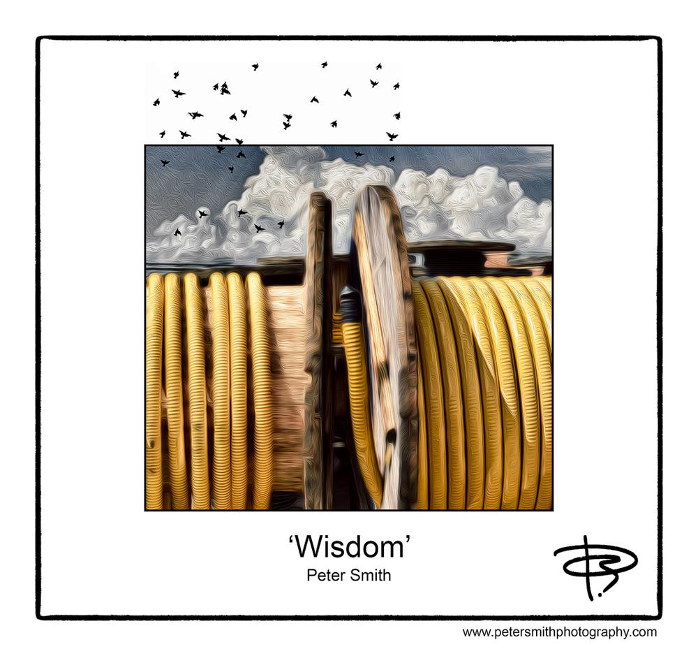Day 30 - Number 23, 2014, 'Wisdom'
