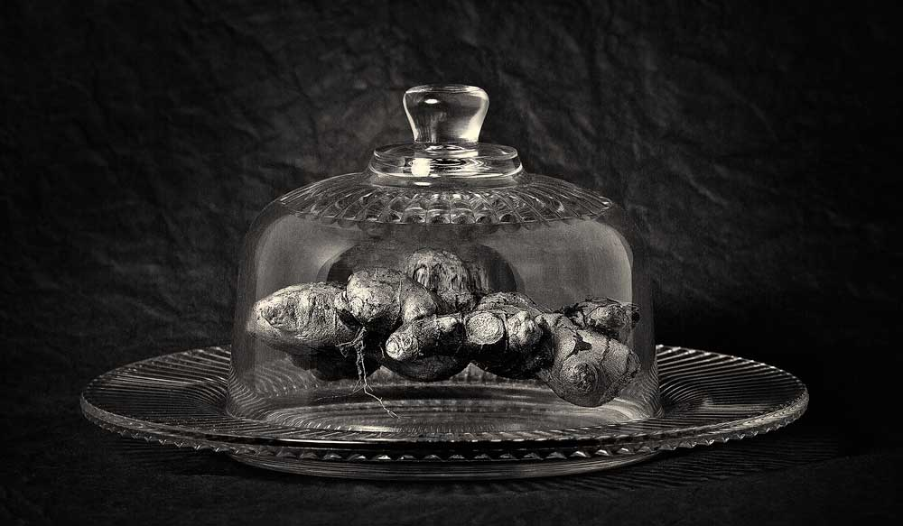 Ginger under Glass
