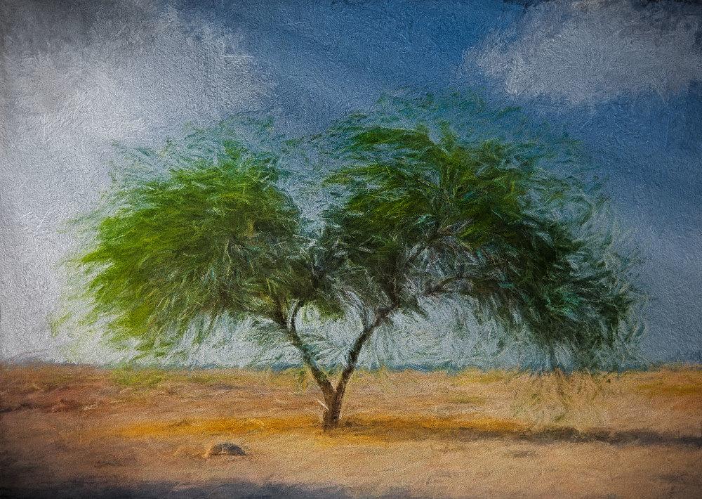 The Turner Tree