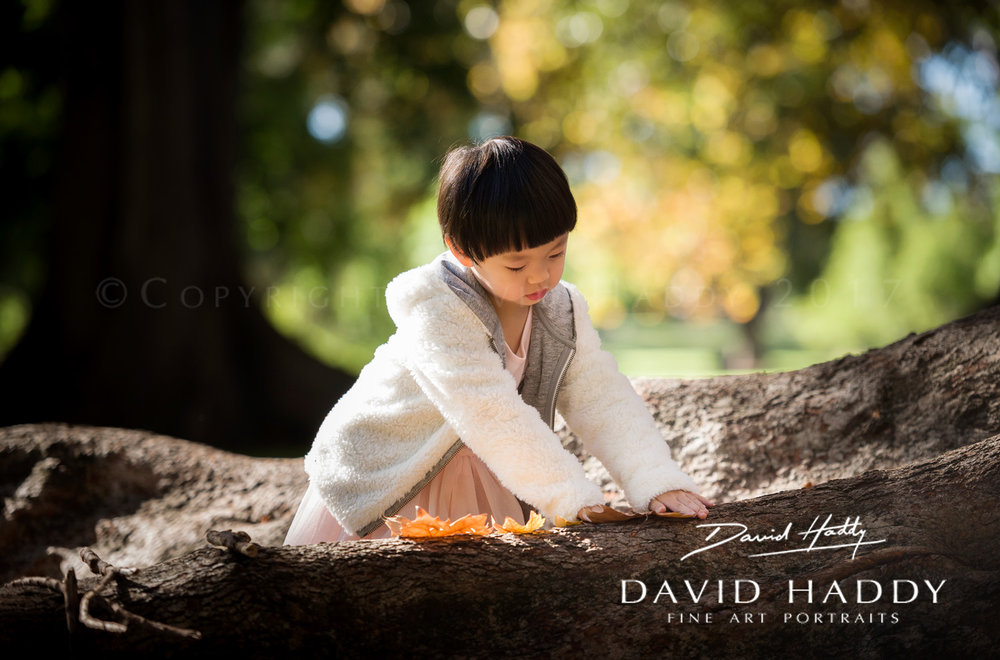 Adelaide Botanic Park - by family photographer David Haddy
