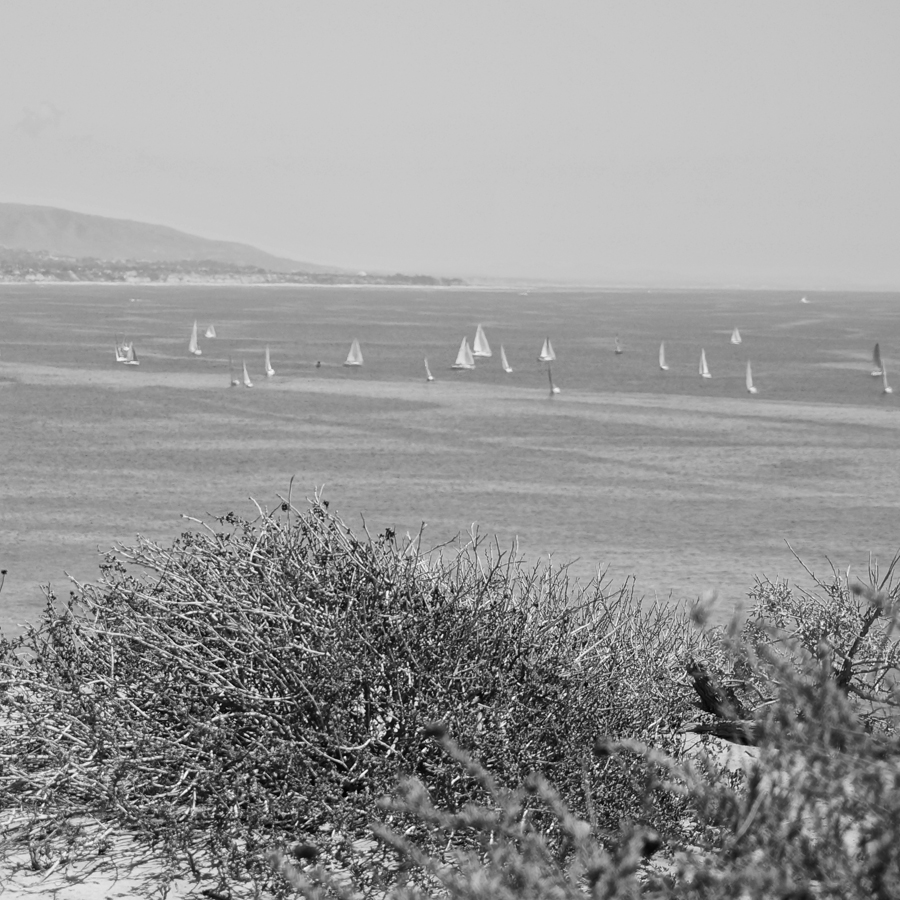 black and white headlands2.jpg
