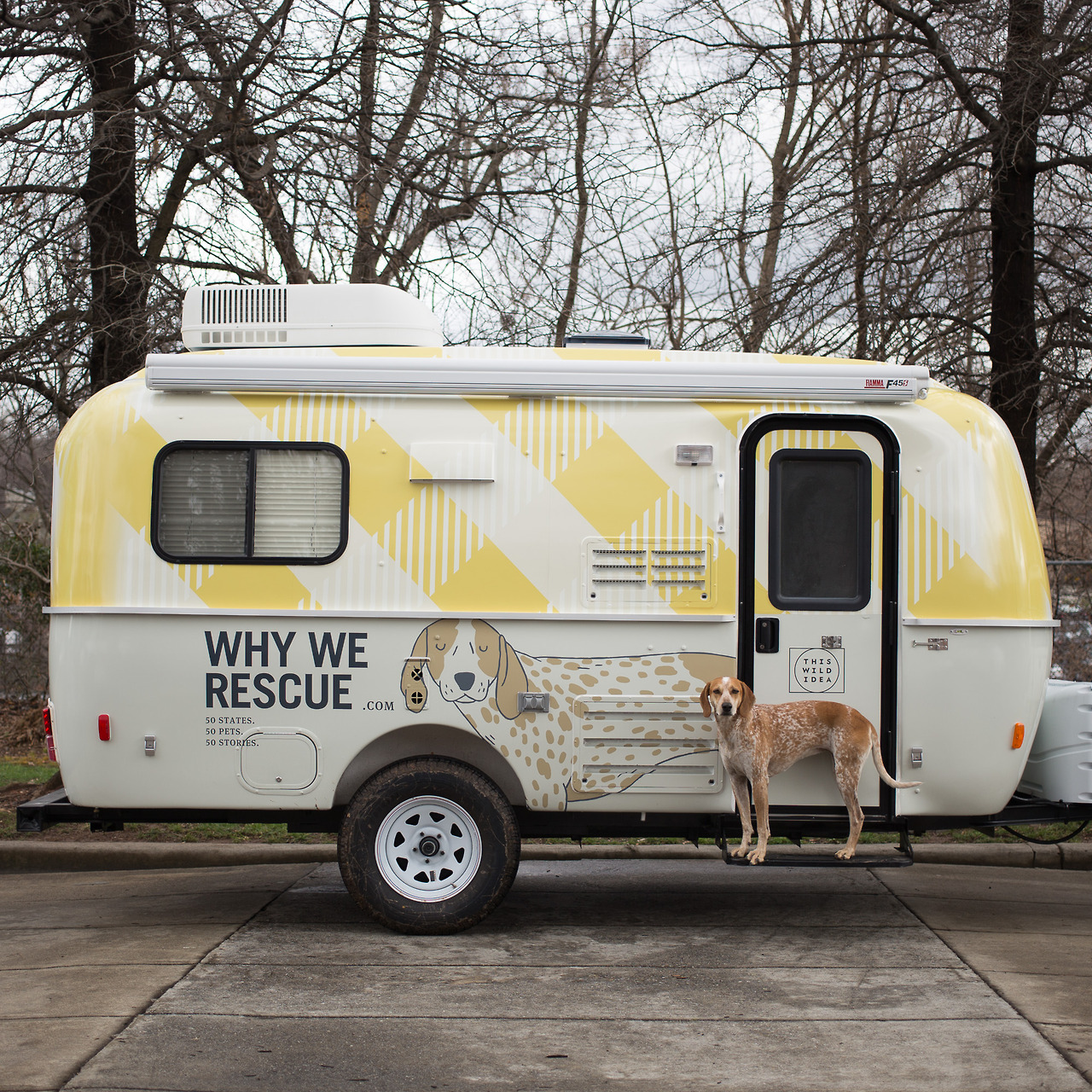 maddieonthings :      Today is a new day! The trailer is wrapped and ready for all 50 states (and some of Canada too). Look for the Maddie book tour and Why We Rescue websites to launch later this week.    I'm pumped to meet all ya'll out on the road! It's going to be an amazing 10 months. Hats off to Purina One   for enabling this documentary.     If you're not waking up each morning doing something you love I want to encourage ya'll to live a better story! Do what you love. Live your passion. We only get one go around.      … we are hoping to meet them …