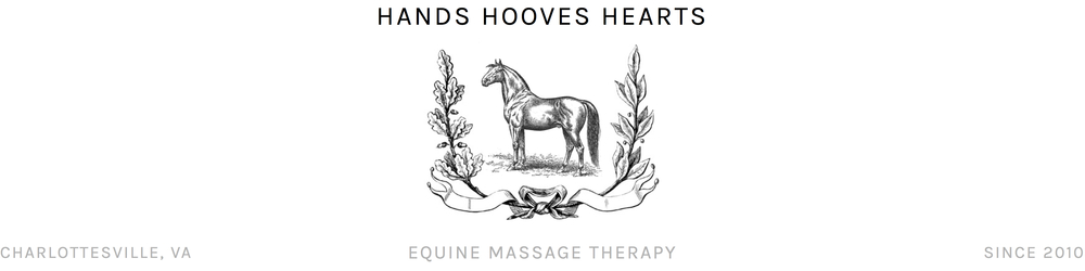 Hands Hooves Hearts Equine Massage Therapy