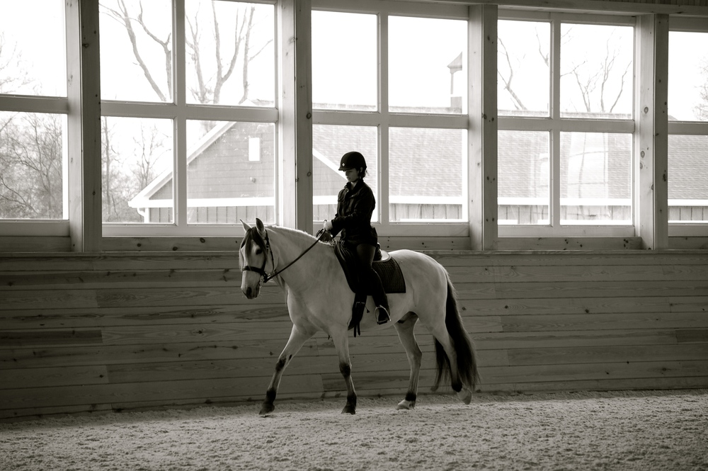 Luar's first day under saddle at Mansfield Farm. He was uncertain of the meaning of our requests to attune his body to ours, but comfortable as all get out.