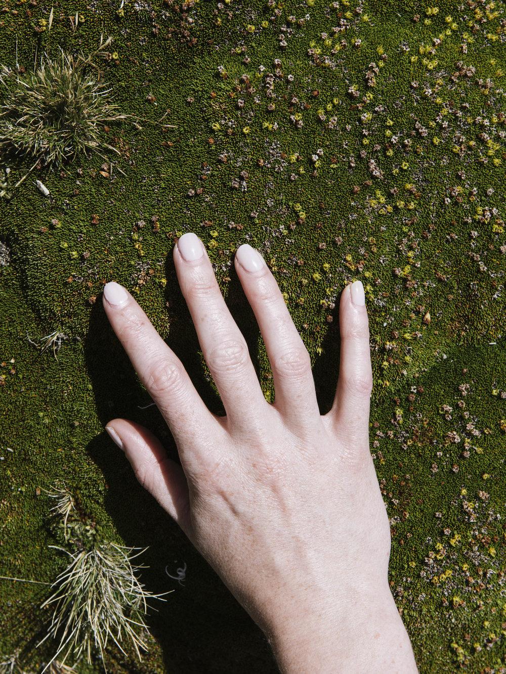 Succulent Texture Hand-1.jpg