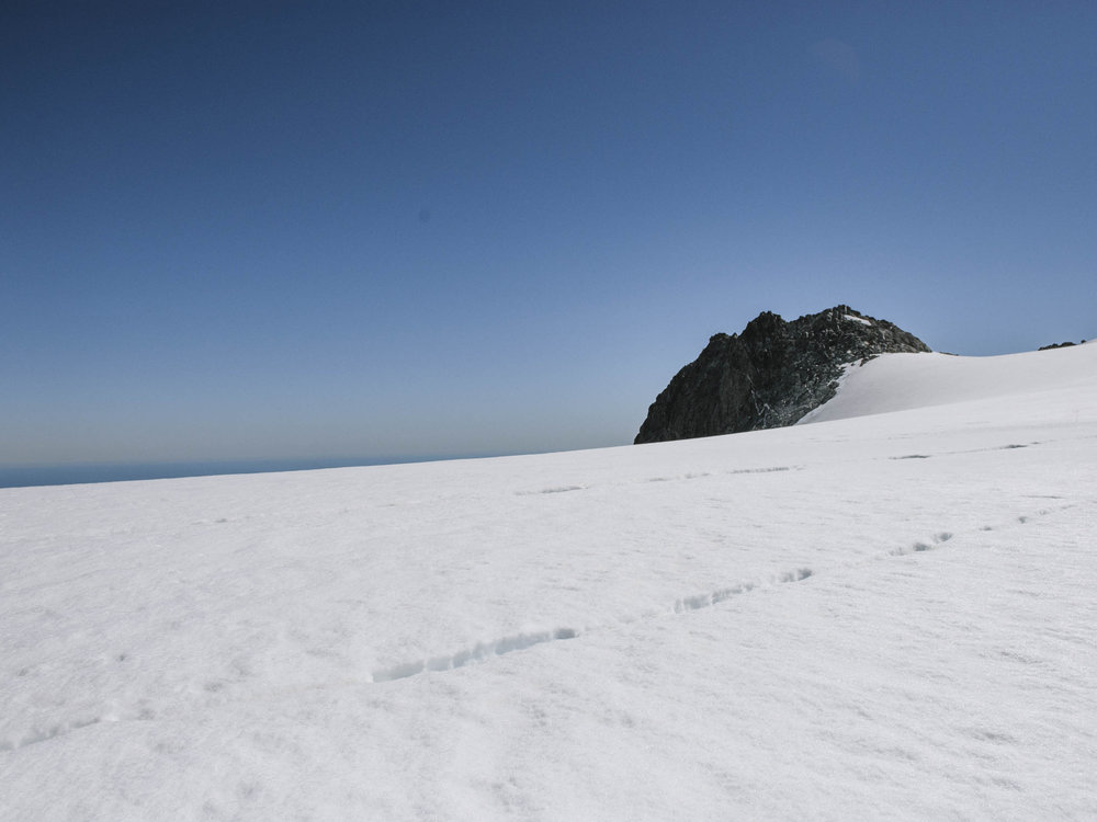 Glacier View-1.jpg