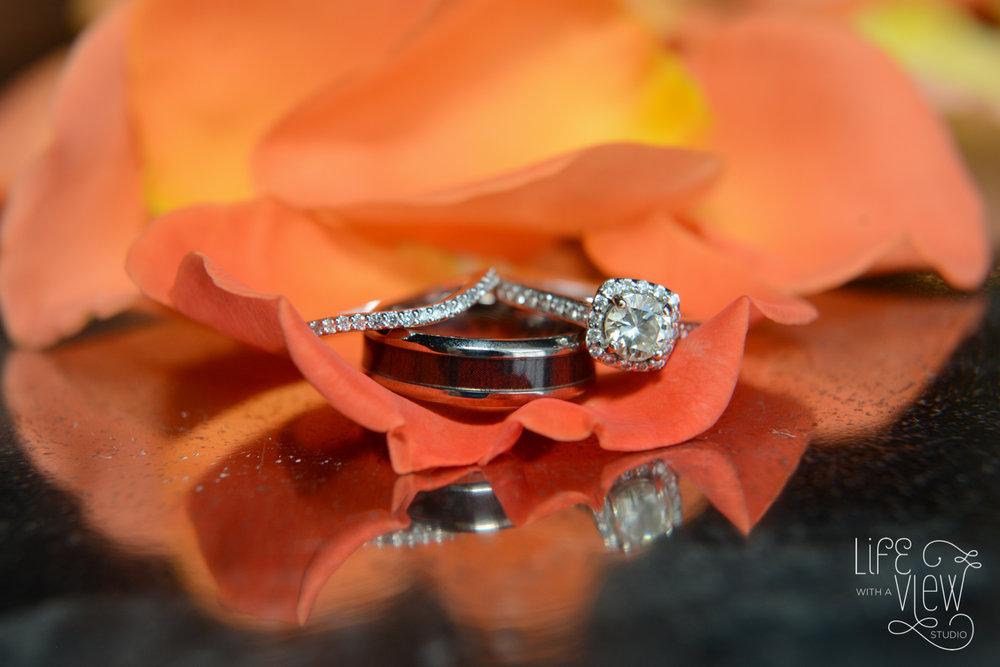 Stout-Wedding-5.jpg