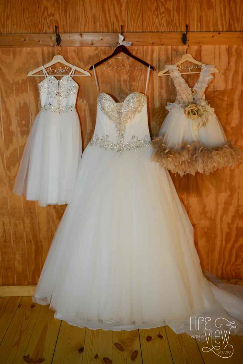 Davis-Wedding-5.jpg