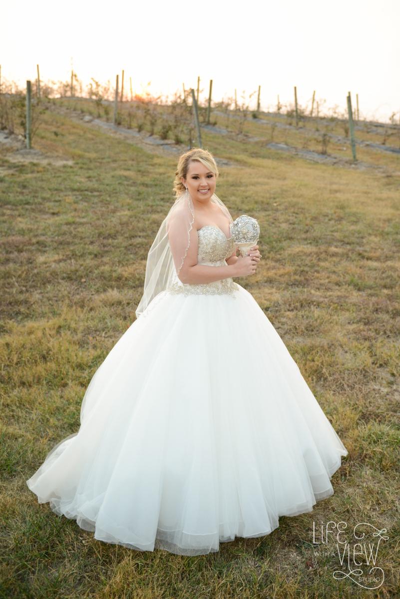 Davis-Wedding-45.jpg
