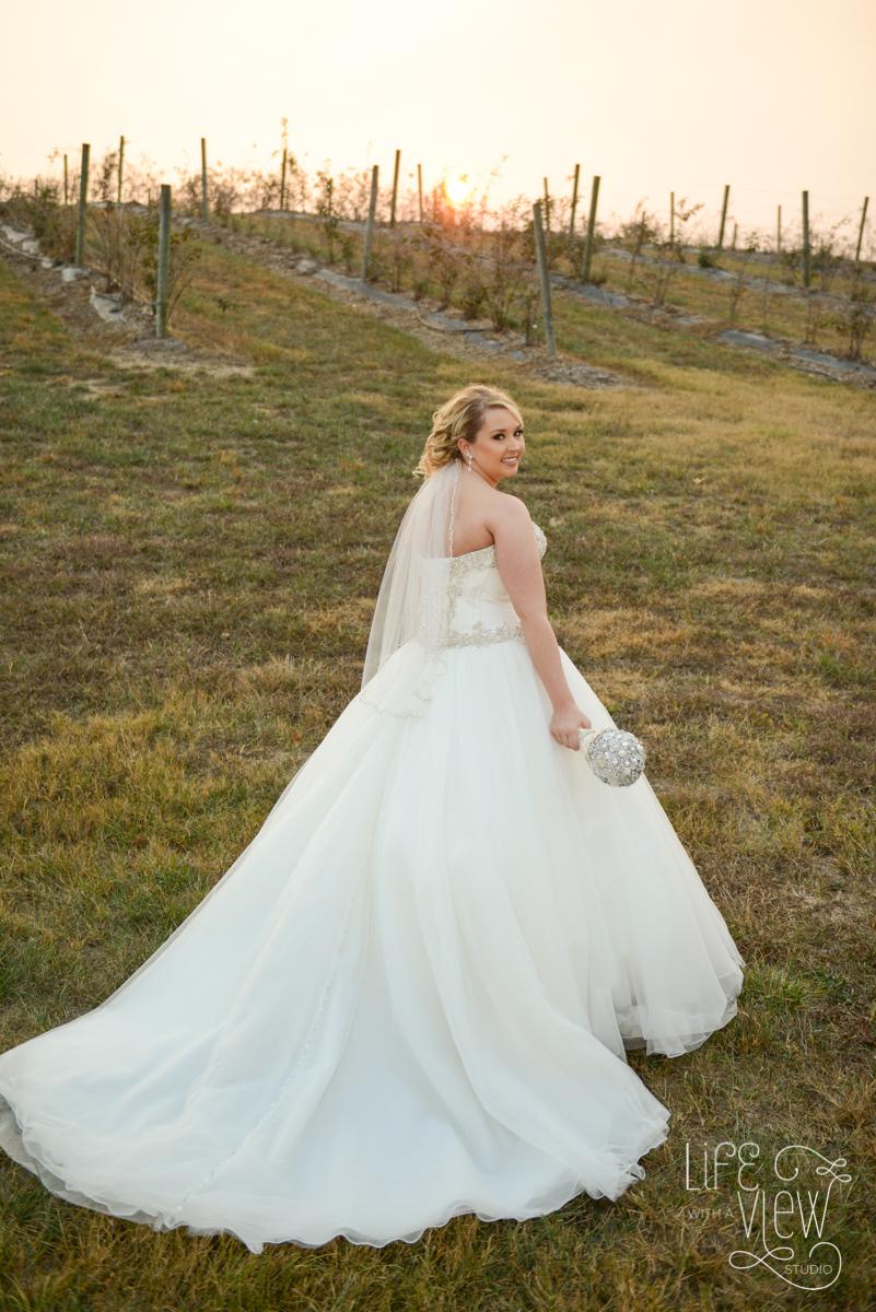 Davis-Wedding-47.jpg