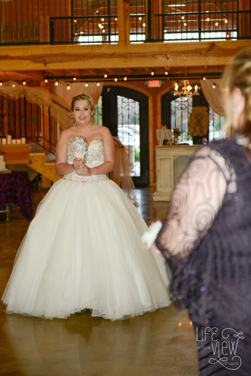 Davis-Wedding-59.jpg