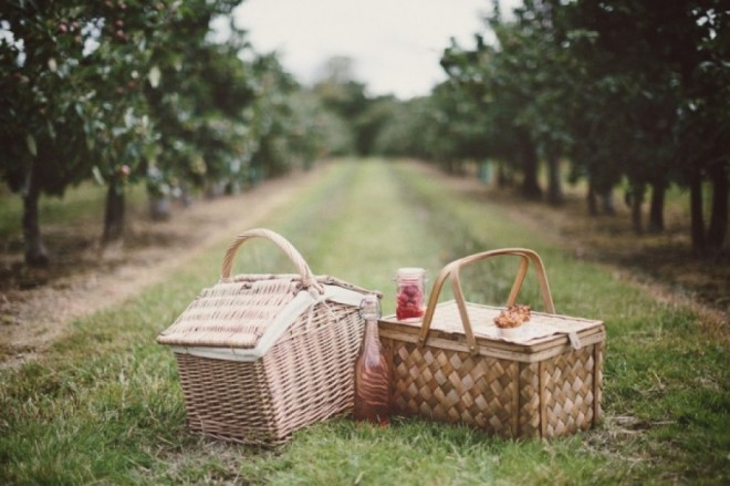 Orchard-Fasion-Photography