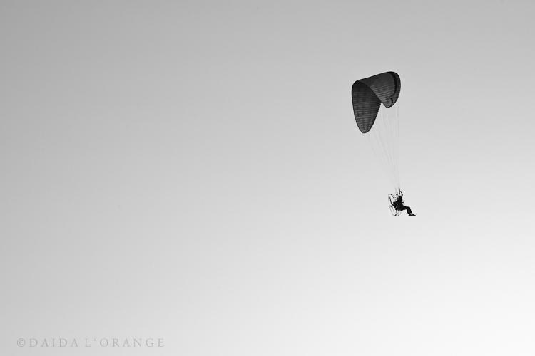 fly high dream big