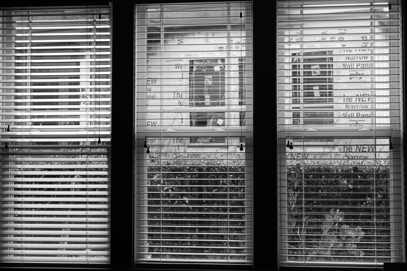window bw