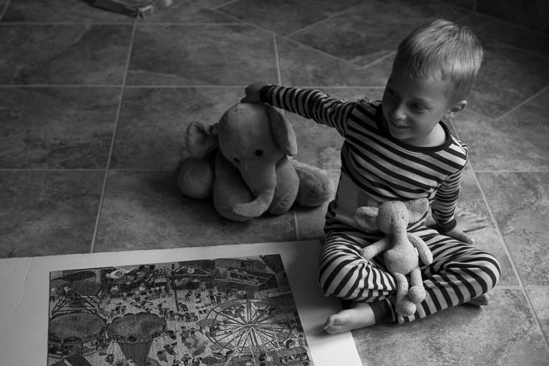 puzzle sage elephants