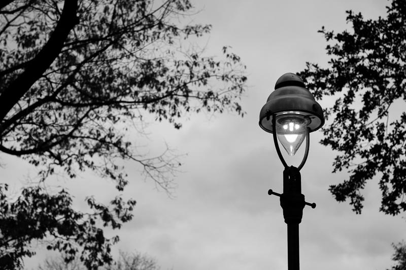 lamp bw