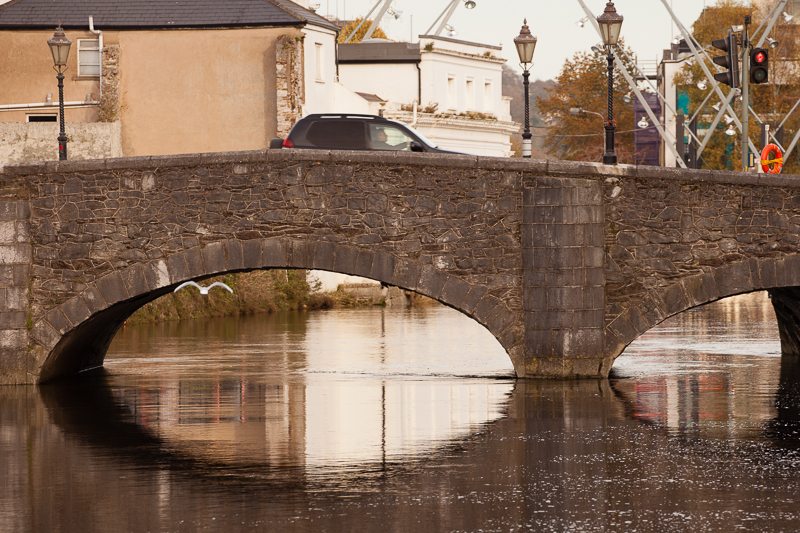 cork bridge reflection seagull