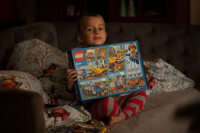 sage and lego set