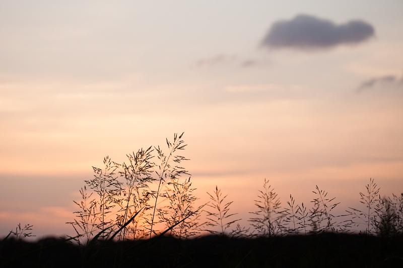 sunset 706
