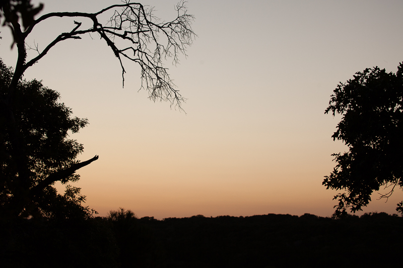 sunset 806
